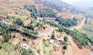 'Rwandan farmers stealing Uganda's fertile soil'