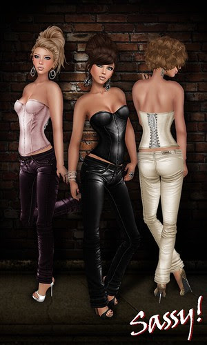 Gramercy and Tribeca MESH corset and pants