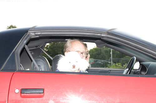 woman man and dog in car_1944 web