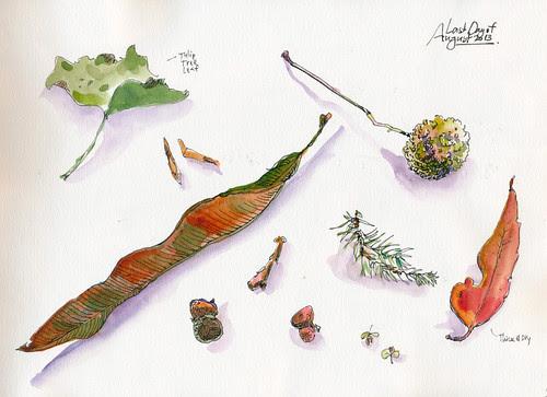 August 2013: Treasures by apple-pine