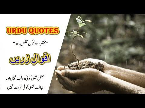 Best quotes in urdu اقوال زریں