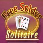 Spider Solitär Umsonst Spielen
