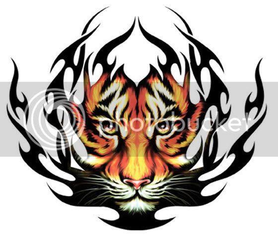 Tribal Tattoo Ndass Tiger body designs