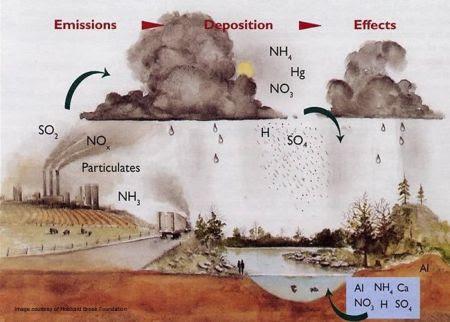 Acid Rain Cycle