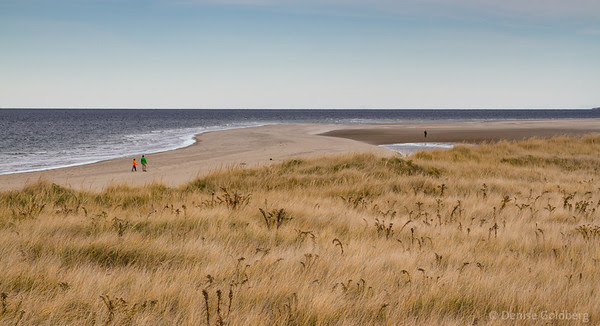 a long expanse of beach, a perfect setting for a calming walk