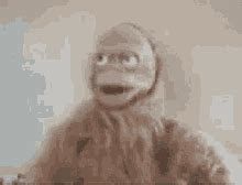 angry monkey gifs tenor