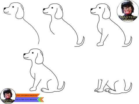 Learn How To Draw Sketch Frogs Ii Belajar Cara Menggambar Sketsa
