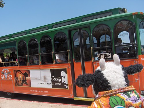 Ding ding! Everybody aboard the zoo tram!