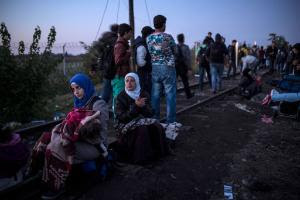 Refugees at  Serbia - Hungary border