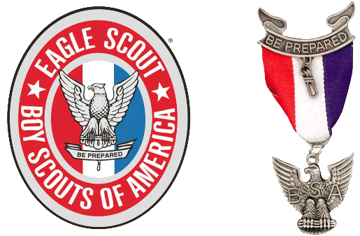 Image result for Scout eagle