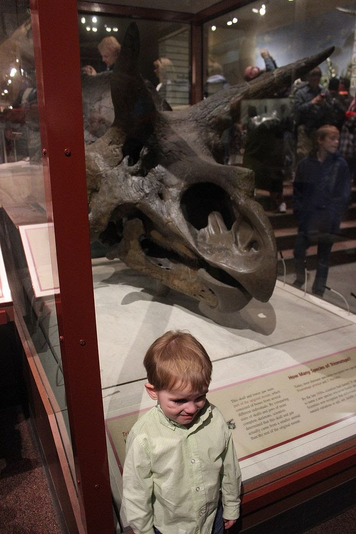 photo Smithsonian23_zps2d00be63.jpg