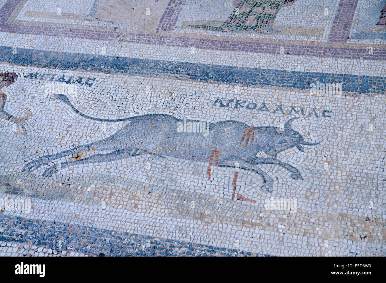 Detail of Mosaic, The Western Archaeological Zone, Kos Town, Kos Island, Dodecanese Islands, Greece. Stock Photo