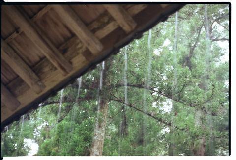 rainstrings Tanjo-ji
