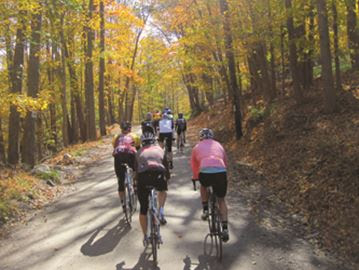 Orillia eyes cycling tourism