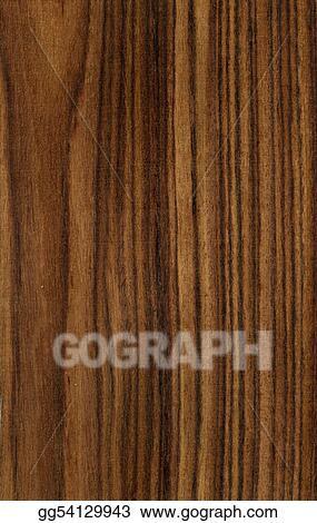 Illustration Commerciale Texture Bois Dessin Clip Art Gg54129943