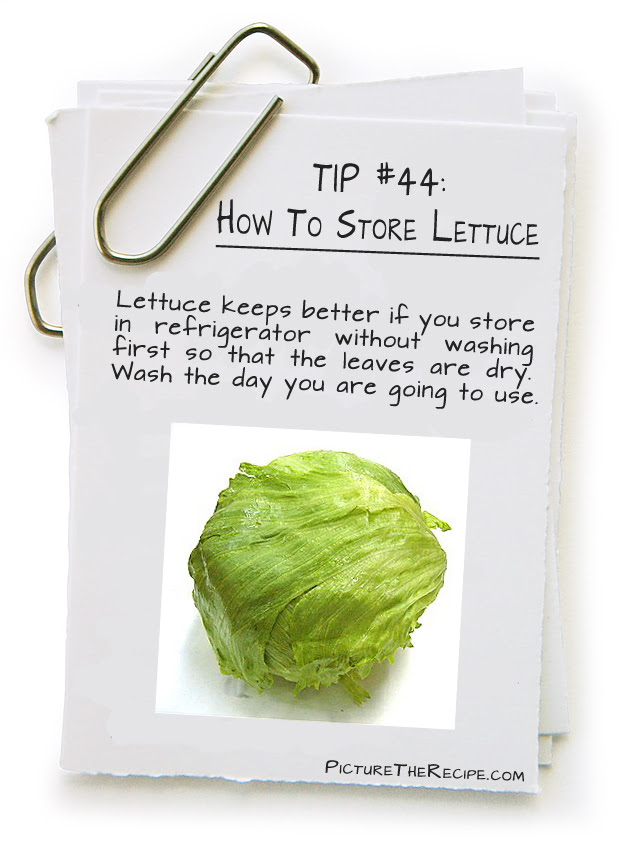 Click Here for store lettuce