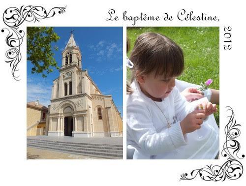 2012-celestine3.jpg