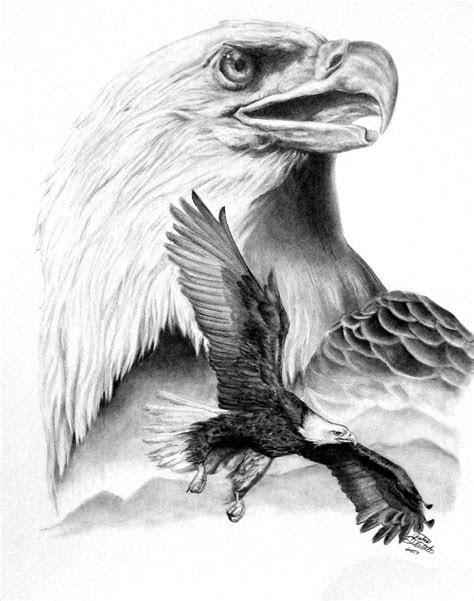 flying bald eagle drawings