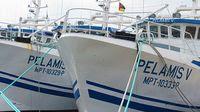 Ematum_barcos-ancorados