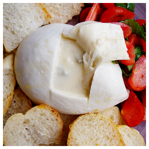 burrata con gorgonzola© by Haalo