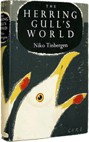 The Herring Gull's World: A Study of the Social Behaviour of Birds by Niko Tinbergen (1953)