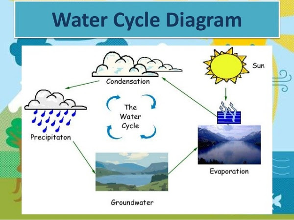 Simple Water Cycle Drawing at GetDrawings | Free download
