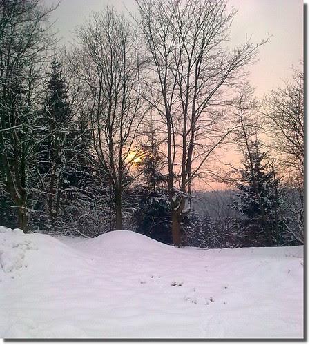 im Harz -ein Winterabend