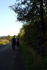 Walking between Longforgan and Invergowrie