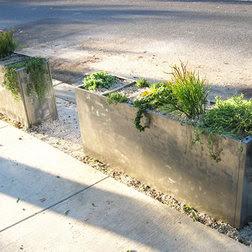 Planter Ideas