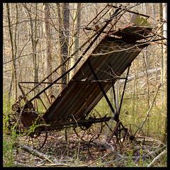 Implement in Woods II