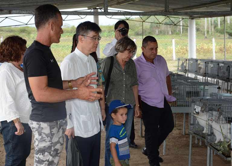 """Alcides González Miglioris (I), productor beneficiario del proyecto """"Apoyo al restablecimiento y desarrollo de la actividad pecuaria de Isla de la Juventud"""" también aprovecha parte de las  21,85 hectáreas para la producción de viandas y hortalizas. Cuba, 10 de abril de 2019."""