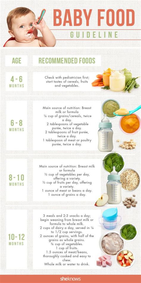 starting solids ideas  pinterest baby solid
