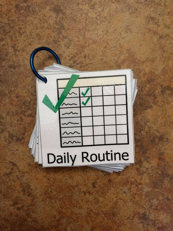 Daily Routine Visual Aid Flash Cards Daily Schedule Cards by ...