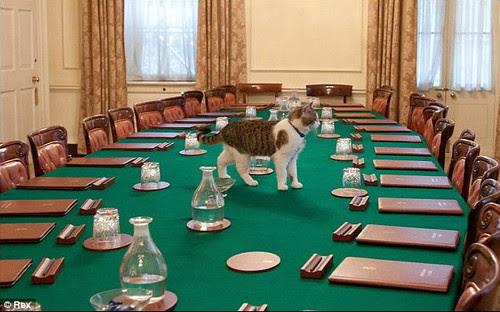 Лари на заседателната маса на британския кабинет