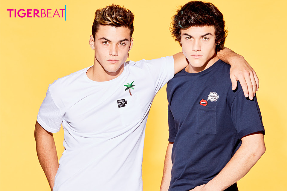 Quiz Whos Your Soulmate Ethan Or Grayson Dolan Tigerbeat