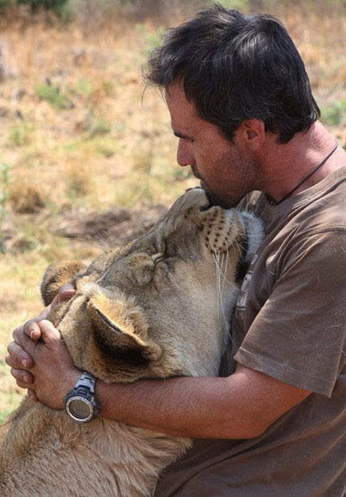 Кевин Ричардсон обнимает львицу. Фото