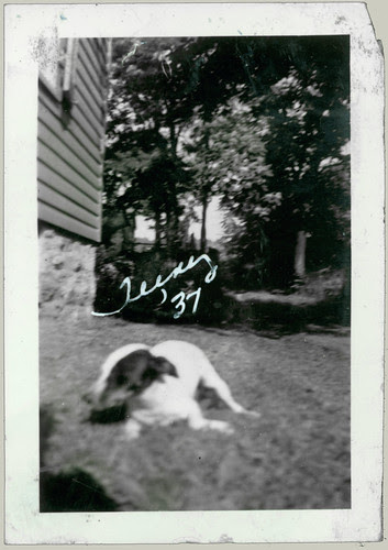 Teeny '37