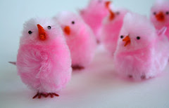 Little Pink Chicks