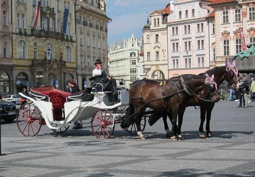 Hevonen ja rattaat Prahan torilla by Anna Amnell