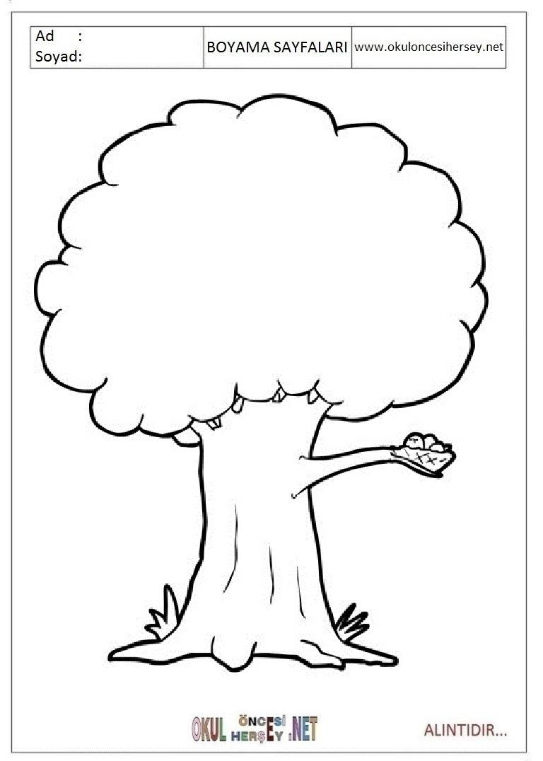 【En İyi Seçilen】 Okul öncesi Ağaç Boyama Sayfaları