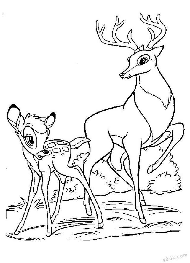 Sevimli Hayvanlar Boyama Sayfaları 3