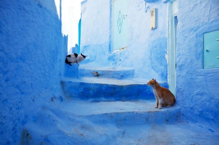 """""""O azul turquesa das casa nesta província de Marrocos torna-a num cenário cinematográfico."""""""
