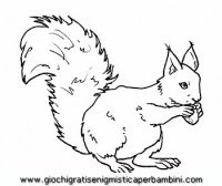 Disegni Di Animali Del Bosco Stampae Colorare