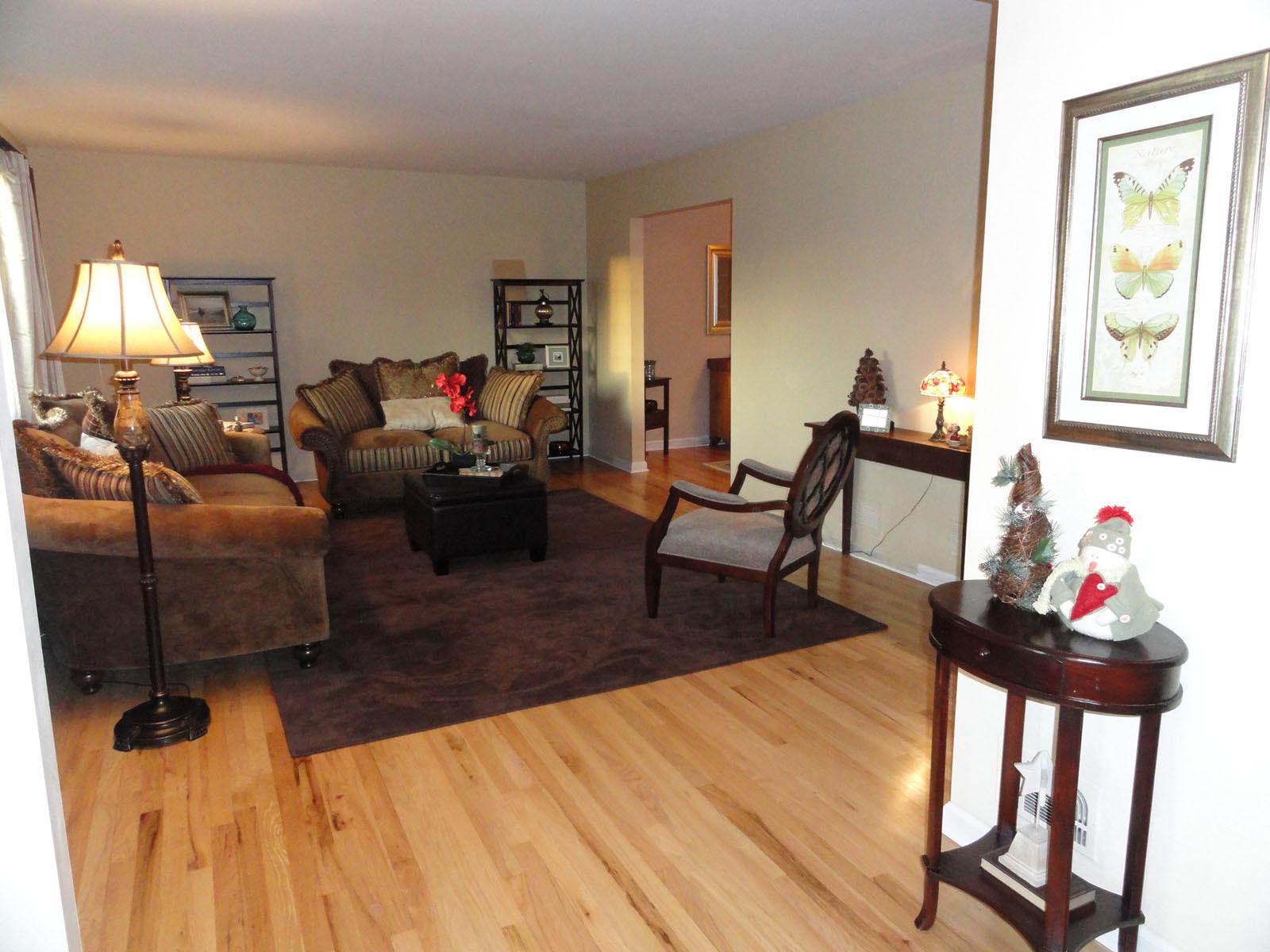 Bland Living Room - help? Ideas? (floor, paint, ceiling