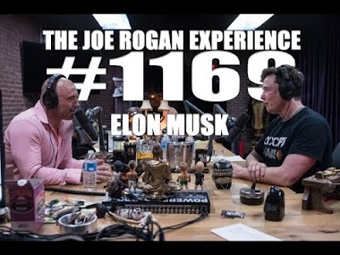 Hidden Treasures in Joe Rogan's Interview with Elon Musk