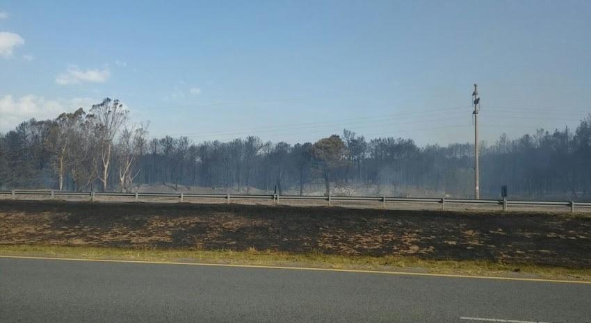 incendio forestal 33