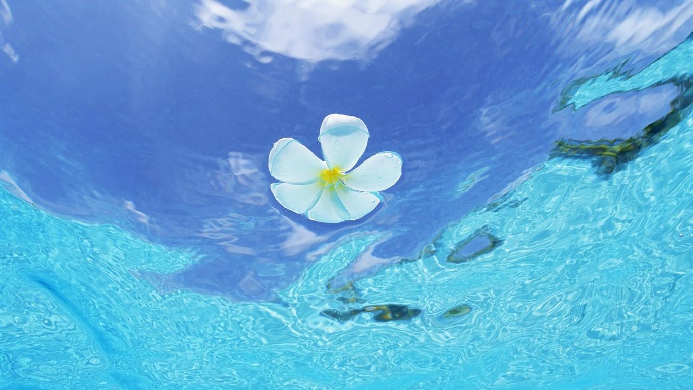 モルディブの水と青空 12 1366x768 壁紙ダウンロード モルディブ