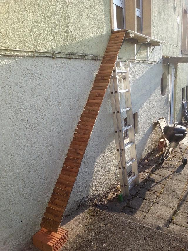 Katzentreppe Bauen