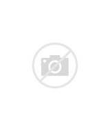 Alcove Bed