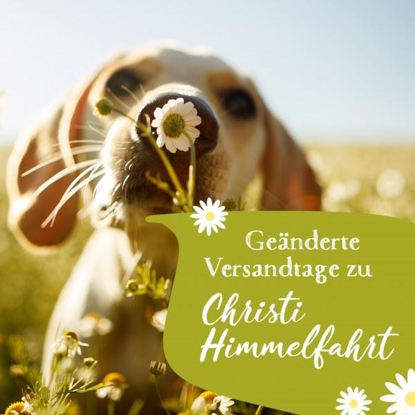 Christi Himmelfahrt 2021 Feiertag Sachsen